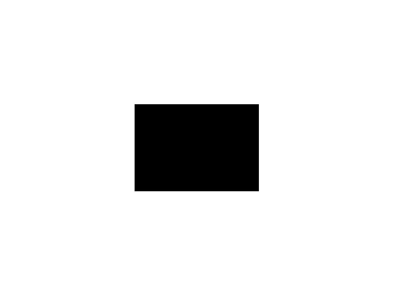 Eulen stehen (23.07.2021)